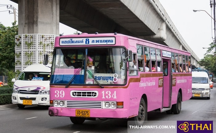 Xe bus màu tím- MicroBus
